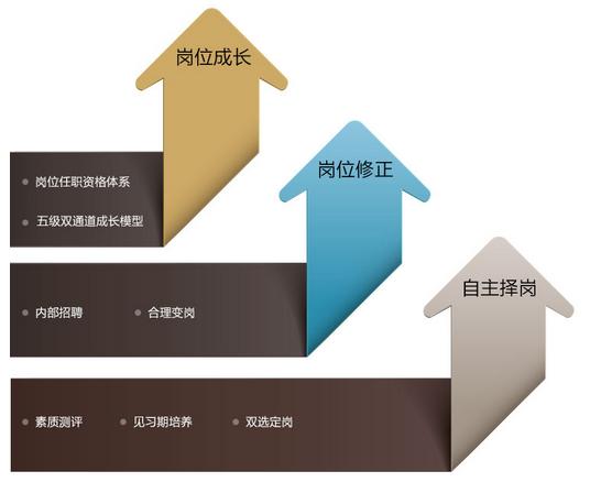 员工培训 - 广东七连星电子科技有限公司-北斗安装